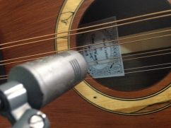Schoeps on a mandola. Transparent.